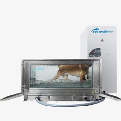 Onderwaterloopband Dog Runner Aqua Runner