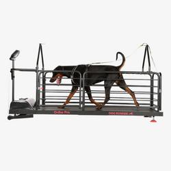 Hondenloopband Dog Runner Ortho Pro