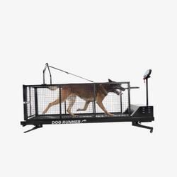 Loopband voor honden Dog Runner XL